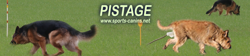 Sports-Canins : Pistage