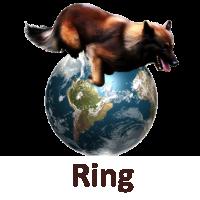 Concours canin evreux
