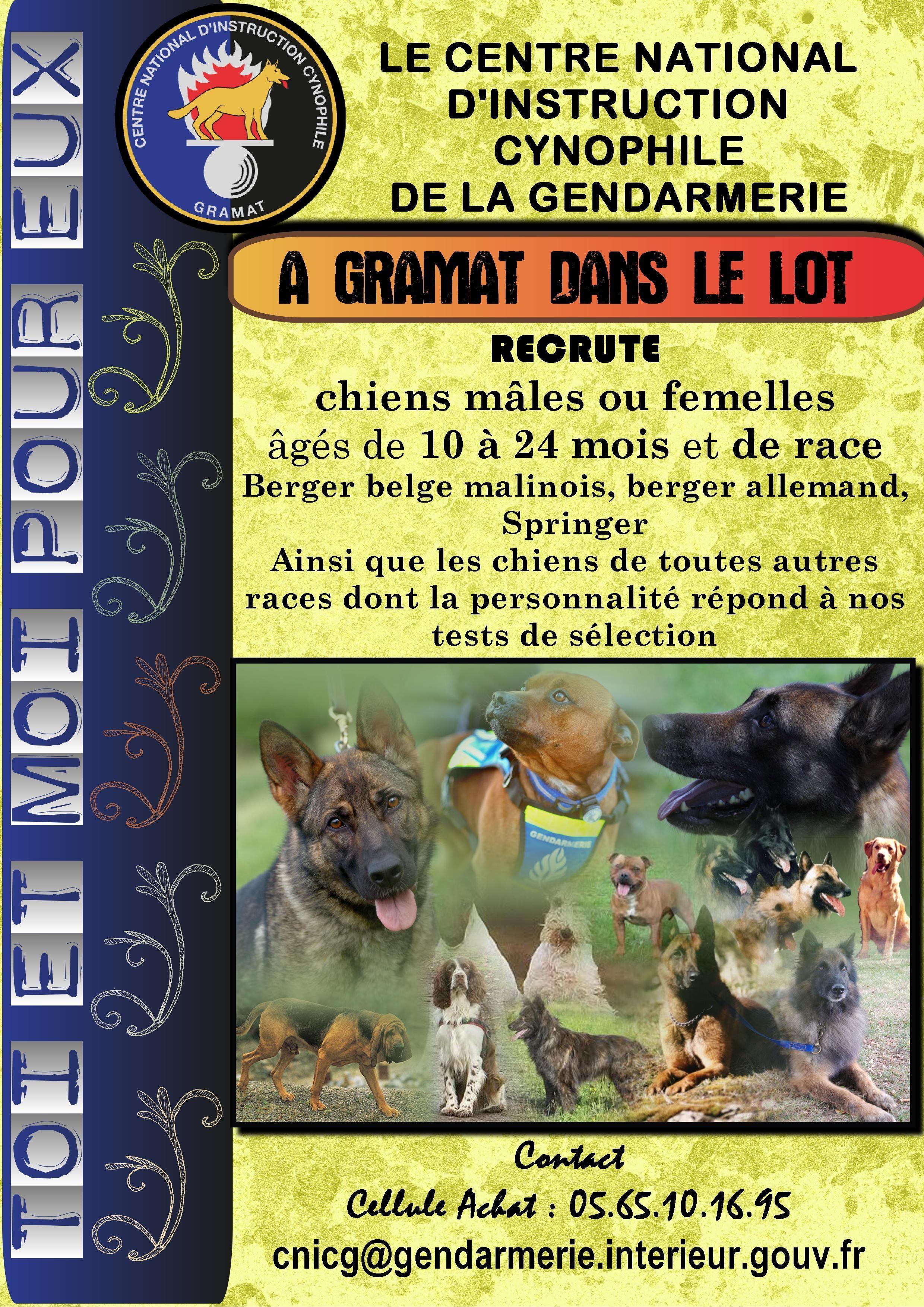 centrale canine lot et garonne